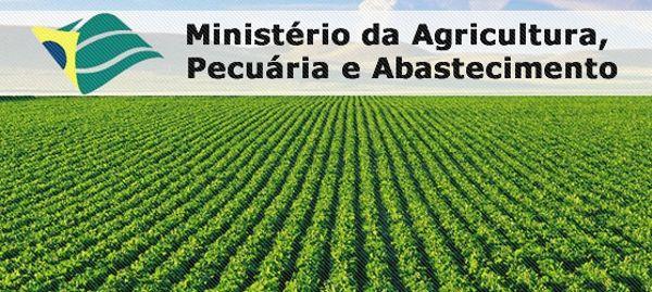 concurso-ministerio-da-agricultura-pecuaria-e-abastecimento